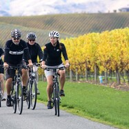 WINE TRAIL MAGIC - LIFESTYLE E-BIKE TOUR