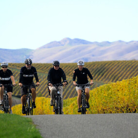 wine trail magic | Pacific Cycle Tours