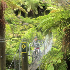 south island mountain biking getaway | Pacific Cycle Tours